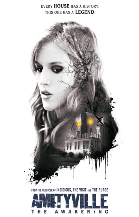 Amityville - The Awakening